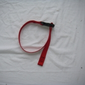1 in Plastic Buckle Strap